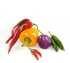 import export sweet pepper